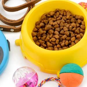 Best Sellers Pet Supplies